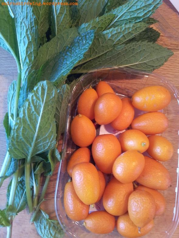 Kumquats und Minze - die Grundzutaten für den Eistee
