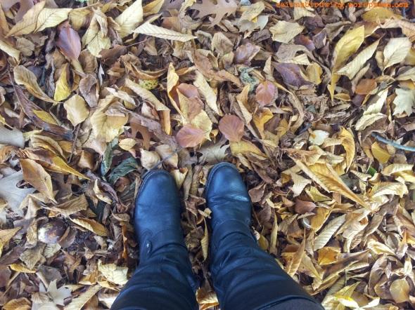 Meine Lieblingsbeschäftigung im Herbst: Laub durch die Gegend kicken!